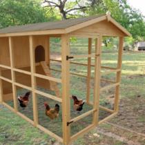 Poulailler 9 de 6,09m2 de 8 à 12 poules